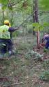 Zadbają o tereny zielone gmin powiatu kieleckiego